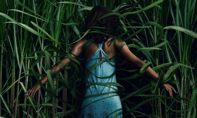 In The Tall Grass Movie Review, In the Tall Grass Netflix Movie Review, Ratings